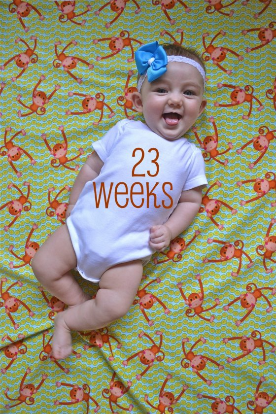Keelin on Monkey fabric - 23 weeks