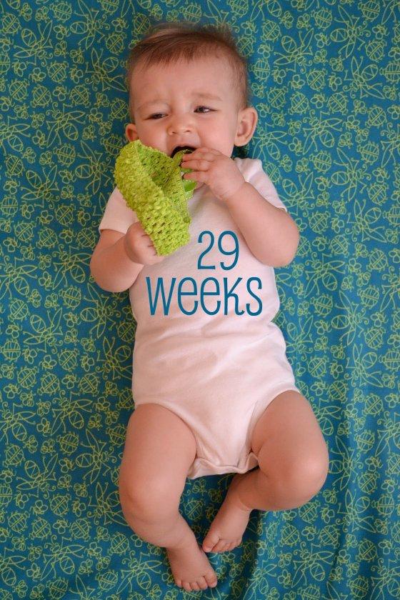 weekly onesie 29 weeks