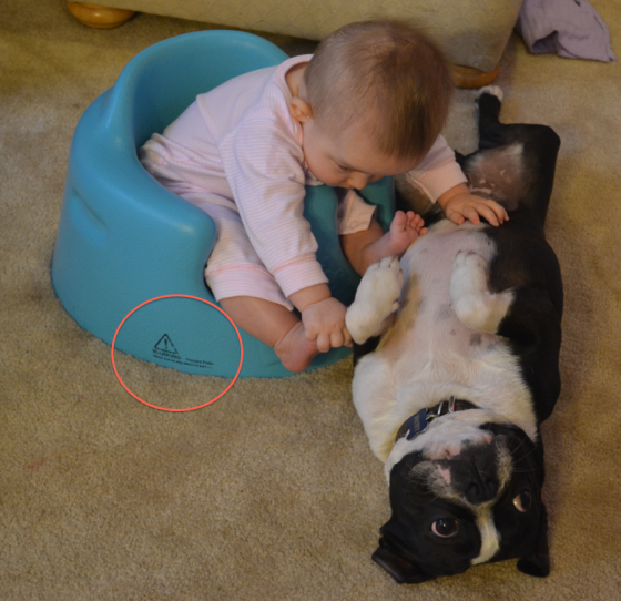baby and dog with bumbo